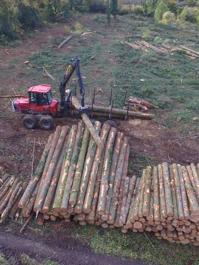 Piling the logs from a clearfell project